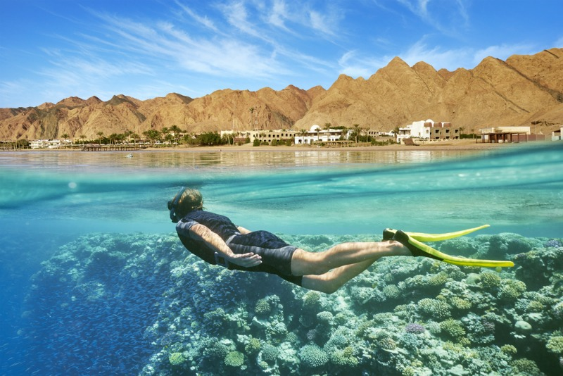 Image of woman swimming and having dream holiday in egypt