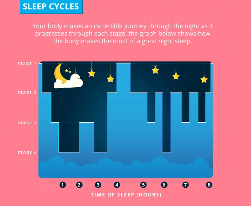 Graphic of Sleep Cycles