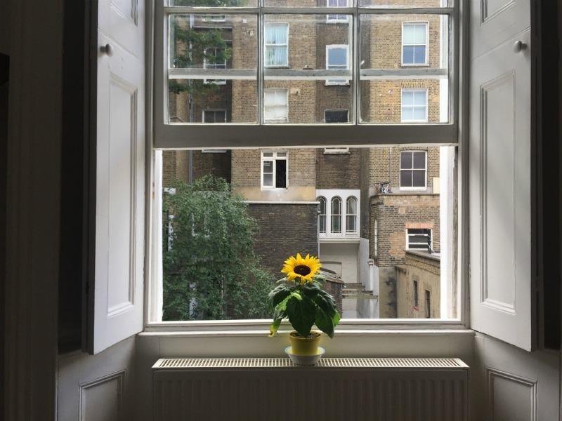 Period property window
