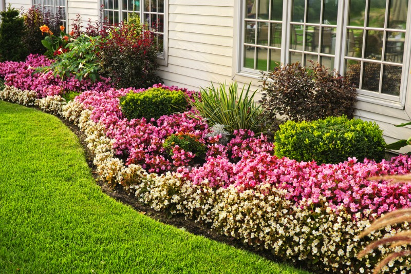 Image of a flower bed alongside a house