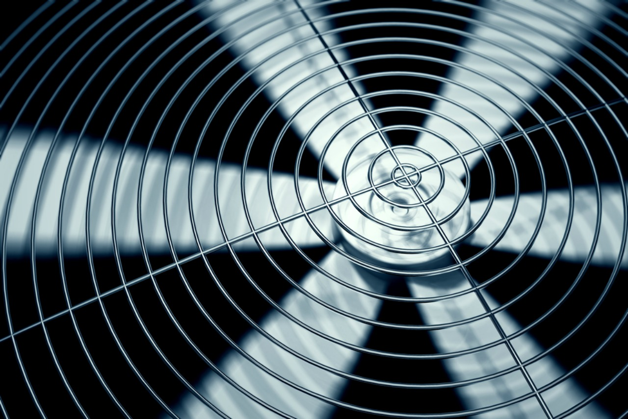 Image of a fan used to stay cool