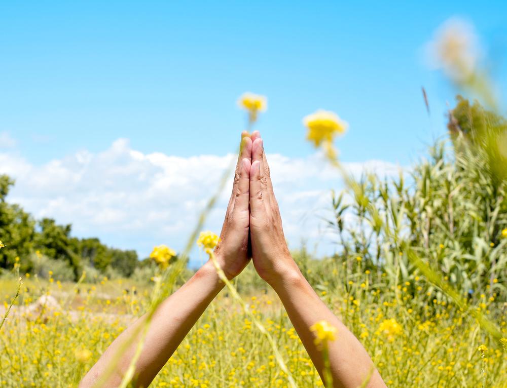 Prayer hands in a meadow