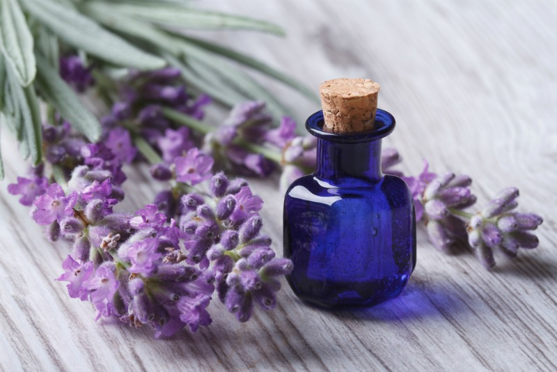 Lavender is one of the best natural sleep remedies from around the world.
