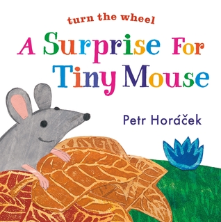 A Surprise for Tiny Mouse by Petr Horacek
