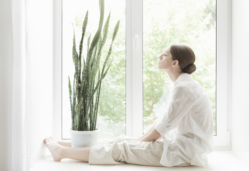 Woman sitting by window with snake plant